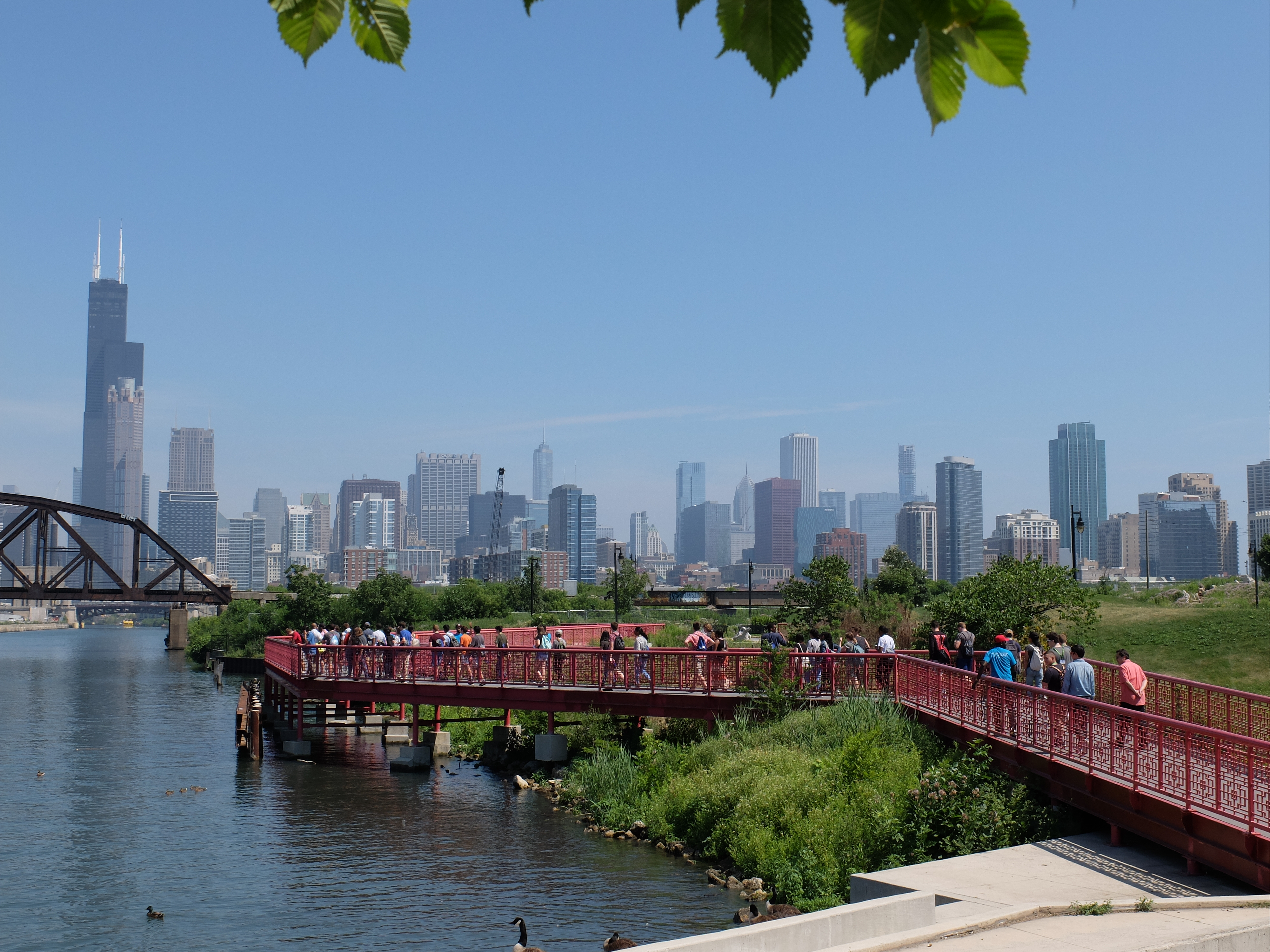 Image of Chicago skyline from Chinatown