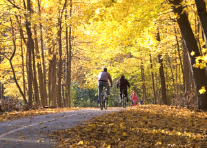 Fall_Biking