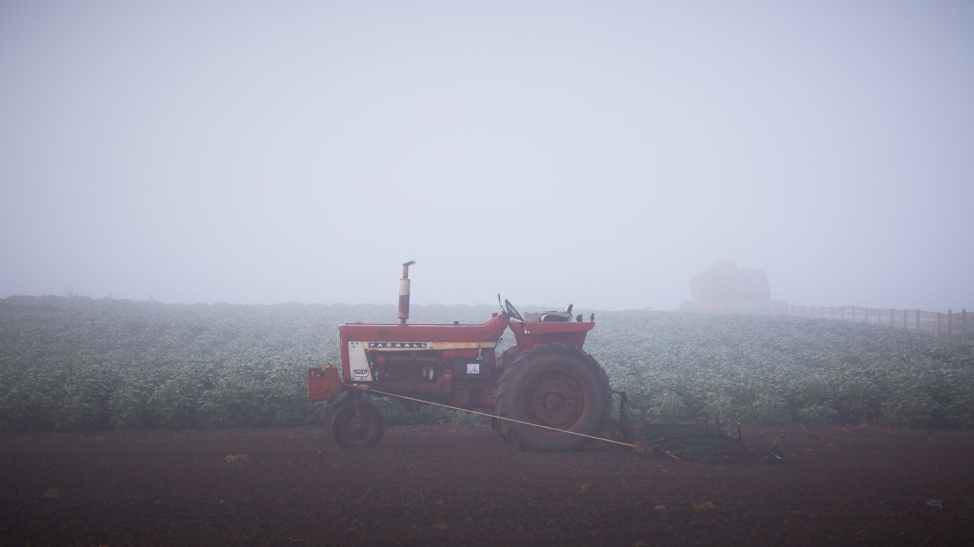 Mist rises on a suburban farm.